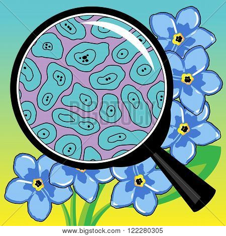 Vector illustration biological cells of flower a petal watch through a magnifier