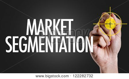Hand writing the text: Market Segmentation