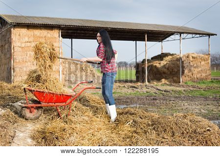 Pretty Country Woman Working With Animal Manure
