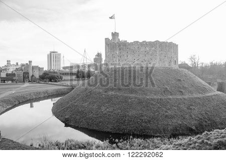 Cardiff Castle View