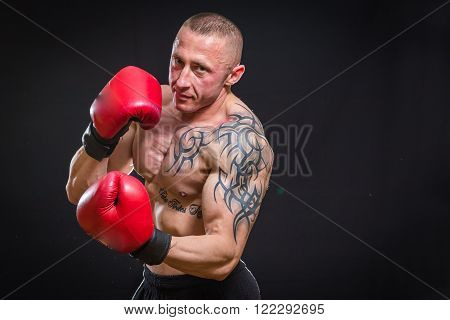 Muscular man in boxing gloves on a dark background. Professional boxer boxing shows muscle in racks. Beautiful muscular body boxer. Photos for sporting magazines, posters and websites.