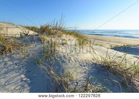 Sand Dunes Along Ocean of North Carolina