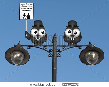 Comical common sense sign with birds perched on a lamppost against a clear blue sky