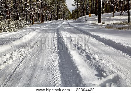 winter snow forest mountain road landscape with tire tracks