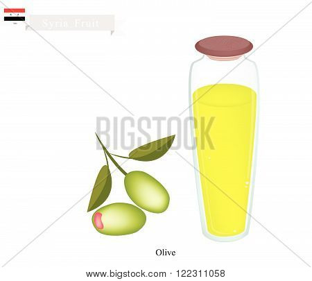 Syria Fruit Fresh Olives. One of The Most Popular Fruit of Syria.