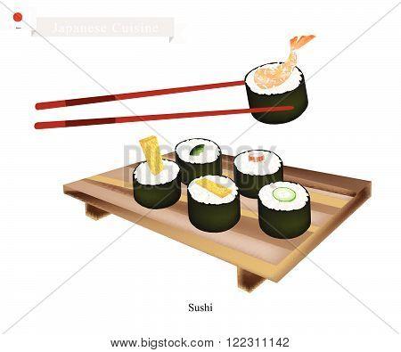 Japanese Cuisine, Illustration of Ebi Tempura, Tamagoyaki, Surimi, Cucumber and Avocado Sushi Roll. One of The Most Popular Dish in Japan.