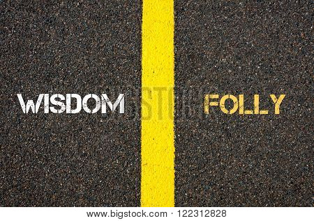 Antonym Concept Of Wisdom Versus Folly