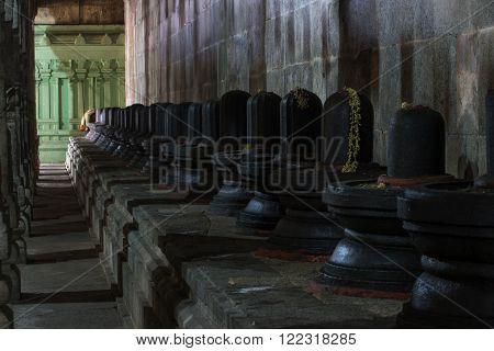Group of Shiva lingams in Shiva temple, Kanchipuram, India