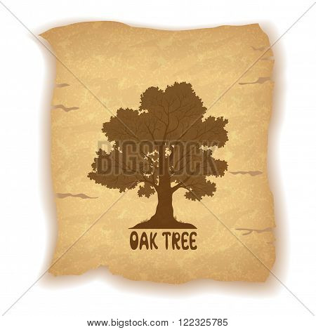 Oak Tree Silhouette and the Inscription on the Vintage Background of an Old Sheet of Paper. Eps10, Contains Transparencies. Vector