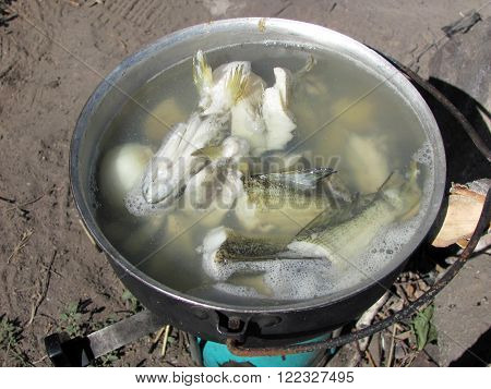 macro copper with fish soup the boiling water with fish pike a pike outdoors