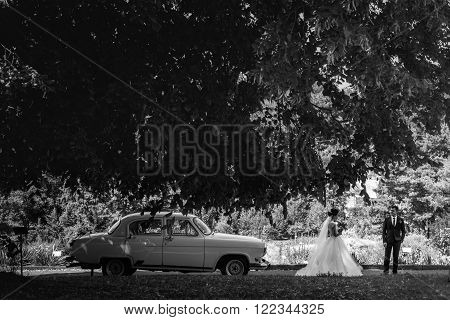 Romantic Couple, Bride And Groom Posing In Park Near Retro White Car B&w