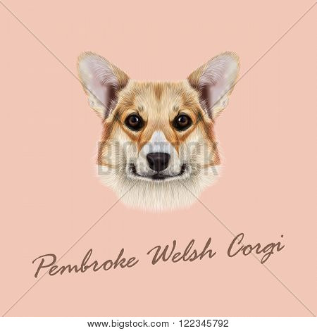 Cute red dog face on pink background