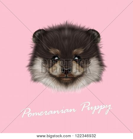 Cute face of puppy on pink background.
