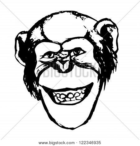 The graphic image of the monkey. Chimp adopts a grimace - smiles grins shows teeth. The figure of a monkey's head on a white background. Abstract illustration vector