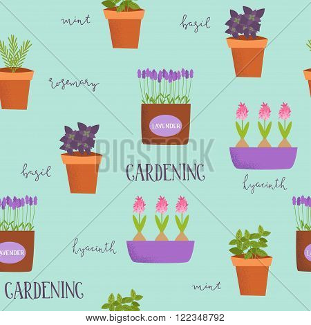Patten of illustrations of plants in pots. Basil rosemary mint lavender tulips hyacinths in different cute pots. Spring illustration.