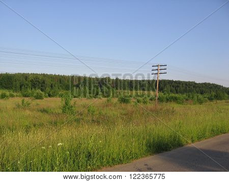 the post wires in the meadow amid the forest and Bush