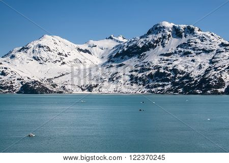 Beautiful waters and snowy mountain peaks in Glacier Bay, Alaska