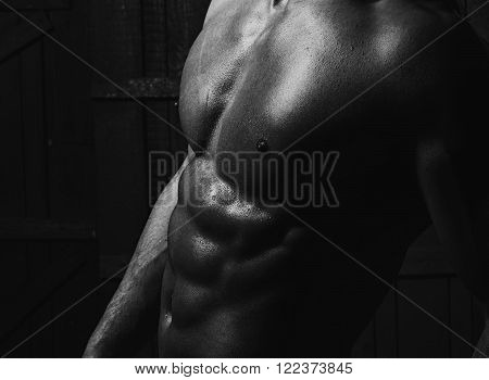 Closeup Of Beautiful Male Body