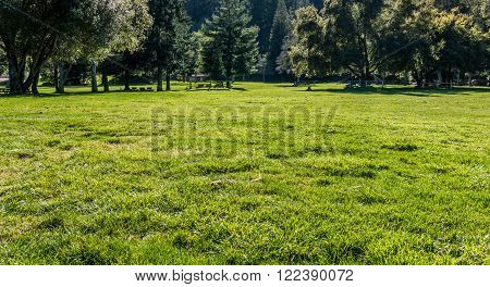 SARATOGA, CA - MARCH 17: A meadow in Sanborn County Park near Saratoga California on March 17, 2016. Sanborn County Park is a public park situated in the Santa Cruz Mountains containing 3688 acres (14.92 km2) holding is heavily forested and offers hiking