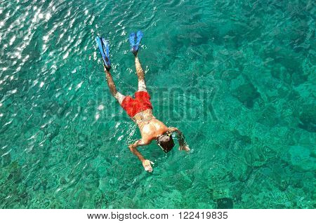 Man Snorkeling In A Tropical Sea