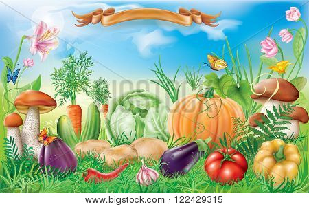 Vegetables in the grass on a background of blue sky. Vector illustration