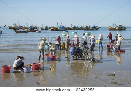 MUI NE, VIETNAM - DECEMBER 25, 2015: Fishermen sorting the catch of the night in the fishing village of Mui Ne