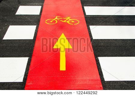 Bicycle traffic road sign on the street asphalt, intersection, urban