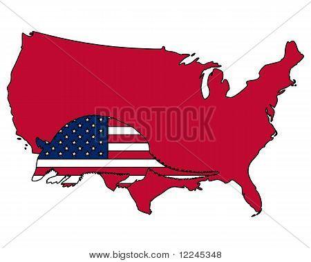 Armadillo United States Of America