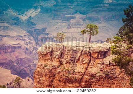 Grand Canyon National Park Colorful Colorado EUA