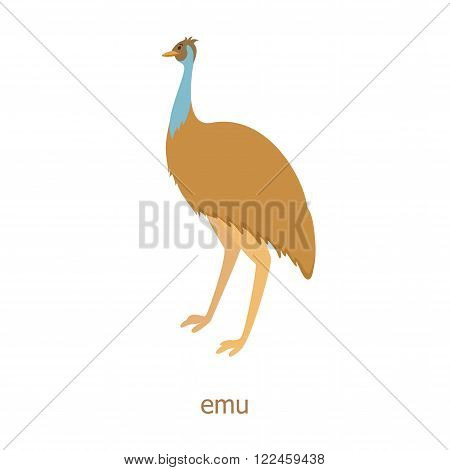 Emu. Cartoon character. Australian endemic emeu.  Zoo illustration. The fauna of the Australian continent. Wild animal. Cute ostrich. Symbol of country.