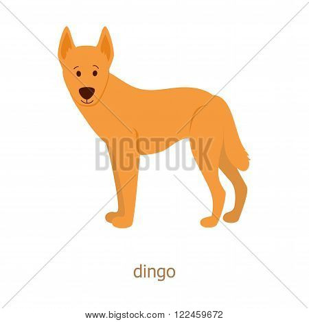 Dingo. Cartoon character. Australian dingo dog. Zoo illustration. The fauna of the Australian continent. Wild animal. Cute fanny dingos.