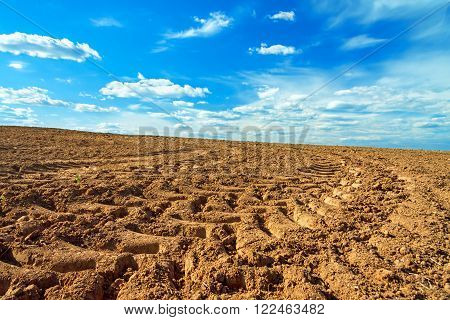 The agriculture arable land field in the spring for crops