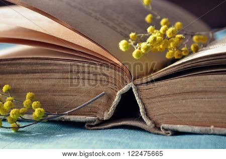 Spring still life - open old book with yellow mimosa flowers. Selective focus at the book's spine - shallow depth of field