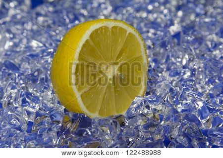 a fresh yellow citron on cold ice