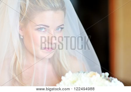 portrait of a beautiful blonde bride through the veil.
