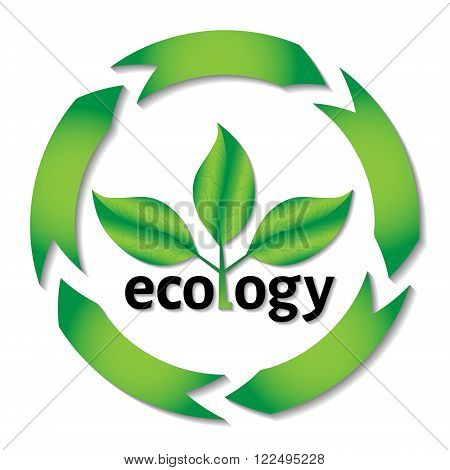 Ecological or environmental concept or logo. Green leaves on a tree with ecology black text with circle arrows.