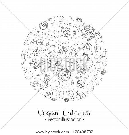 Hand drawn outline vegan calcium products in circle Blackcurrant, blackberry, date, brussel sprout, fennel, collard, amaranth, artichoke, chickpea, almond, lentil, cauliflower, tofu, kale, orange, fig