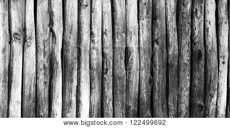 Palisade stockade pilings logs. Abstract background old ancient. Black and white image.