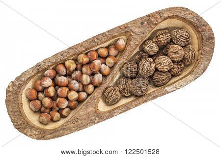 black walnuts and hazelnuts in a mango wood split tray with bark edges, isolated on white, top view