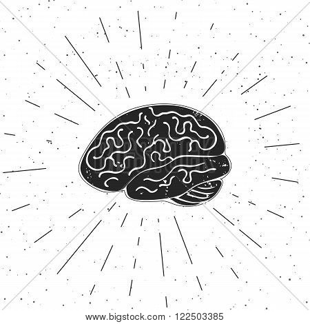 Vector illustration of brain. These are iconic representations of creativity, ideas, education and learning.
