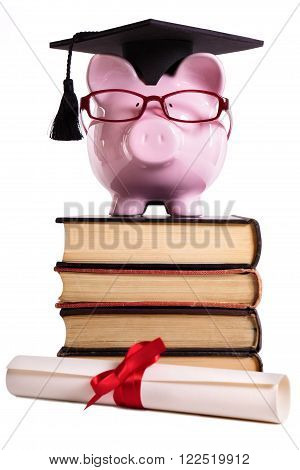 Student college graduate Piggy Bank degree diploma isolated on white background front view