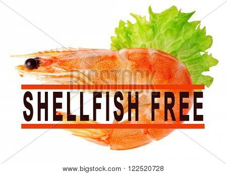 Boiled shrimp with lettuce and shellfish free sign isolated on white
