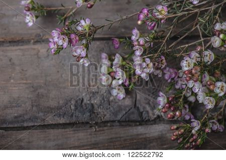 Bouquet of wildflowers on vintage wooden floor