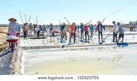 Binh Thuan, Vietnam - January 22nd, 2016: Fishermen raking salt group with rhythmic movements rake in heaps of salt clusters for transportation to collecting point for processing plants morning coastal location in Binh Thuan, Vietnam