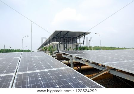 Solar panel in the solar farm used to collect solar energy and converted it to electrical energy.