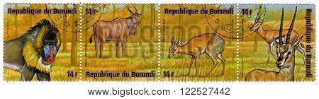 REPUBLICA BURUNDI - CIRCA 1976: A stamp printed in Republica Burundi shows african animals papio mandrulis, taurotragus oryx, madoqua saltiana, gazella thomsoni, circa 1976