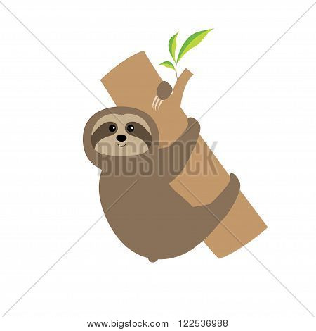 Sloth hugs tree branch. Cute cartoon character. Wild joungle animal collection. Baby education. Isolated. White background. Flat design Vector illustration