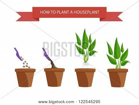 Illustration of houseplants. Cacti set succulents home flowers houseplant in pot. Set of houseplant.