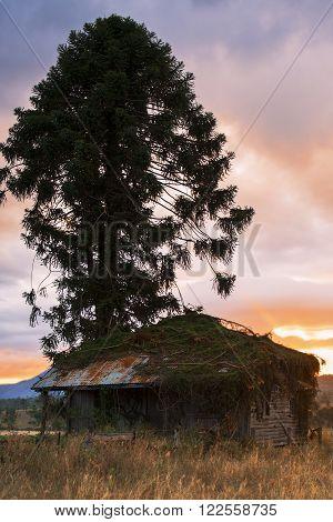 Old abandoned farming shed near Mount Walker in Queensland.