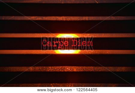 Text Carpe Diem in red and bright sunlight in the background